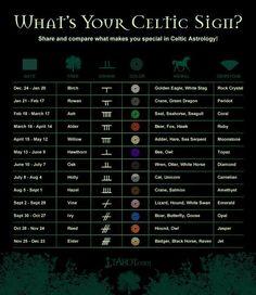 Celtic Sign Celtic Astrology, Astrology Signs, Astrology Chart, Horoscope Signs, Astrology Zodiac, Celtic Signs, Celtic Zodiac Signs, Zodiac Signs Symbols, Celtic Tree