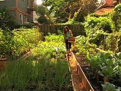 Backyard farm