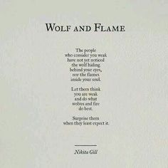 wolf and flame