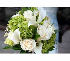 Hand tied bouquet of green mini hydrangea, white mini calla lilies and ivory Vendella roses accented with green  hypericum berries.