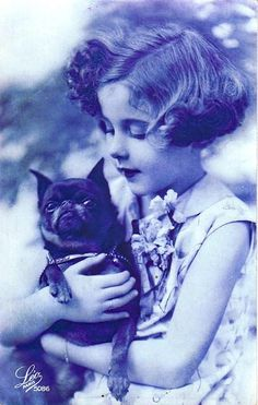 awwww!  maybe a short haired brussels griffon??