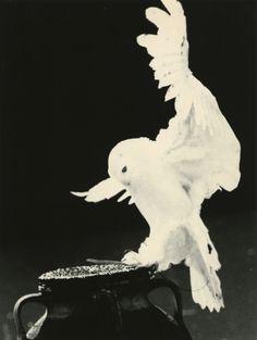 Masao Yamamoto - Exhibitions - Yancey Richardson