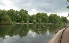 St. James's Park #ThePurplePassport #nature