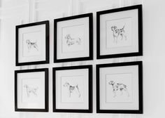 Introducing The Next Classics: collectible new English Dog series, matted and framed by hand in our workshop in New Jersey, on the western bank of the Passaic River.