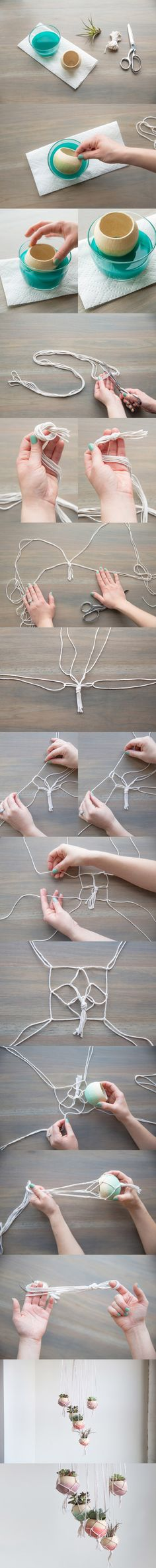 DIY - Plantes suspendues