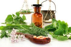 Top 10 Medicinal Herbs For Your Garden Top 10 Medicinal Herbs for your garden Medicinal Herbs, Medicine, Garden, Modern, Top, Garten, Trendy Tree, Lawn And Garden, Gardens