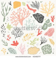 vector Illustration with sea life objects