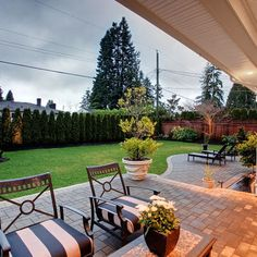 Privacy trees along back fence... Totally doing this!!! This summer!