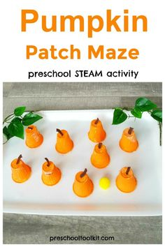 Make a pumpkin patch maze with pompom seeds in this fun preschool craft for fall. Small Pumpkins, Mini Pumpkins, Pumpkin Art, Pumpkin Crafts, Fun Places For Kids, Steam Activities, Autumn Crafts, Little Pumpkin, Preschool Crafts
