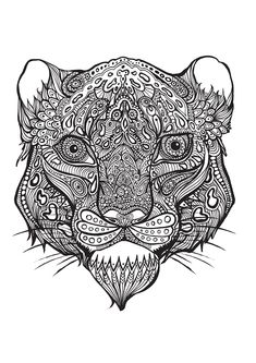 Tiger adult colouring | Bestiaire extraordinaire : 100 coloriages anti-stress: Amazon.de: Hannah Davies, Richard Merritt, Cindy Wilde: Fremdsprachige Bücher