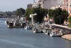 Salva la veu del Poble: La Cofradia De pescadores de Cullera lamentan caíd...