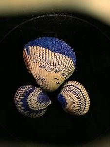 Getting Creative with Shells and Sharpies: Turn boring shells into something beautiful with ...