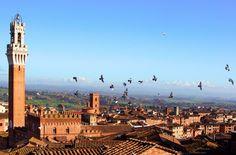 Volo di uccelli su Siena. Foto di Maria Sorokina su http://www.flickr.com/photos/mariasorokina/10205743423