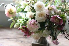 Erin Benzakein / Floret Flower Farm