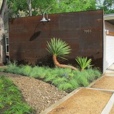 Modern Courtyard Design Ideas, Pictures, Remodel and Decor