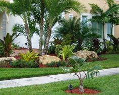 Tropical Landscape Design: another front yard inspiration