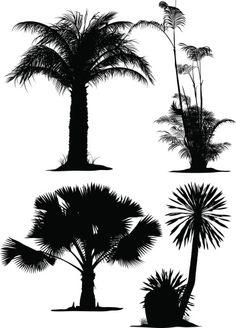 Vectores libres de derechos: Palm Tree Silhouettes