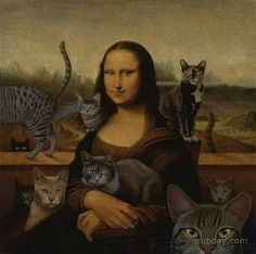 Cats with Mona Lisa or Leonardo da Vinci. Crazy Cat Lady, Crazy Cats, I Love Cats, Cool Cats, Funny Cats, Funny Animals, La Madone, Mona Lisa Parody, Cat People