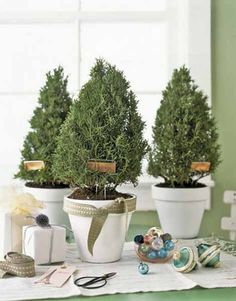 Inexpensive Green Holiday Decor, Handmade Decorations and Table Centerpieces