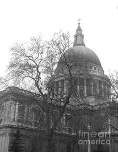 St Pauls Black And White © Mark Bowden