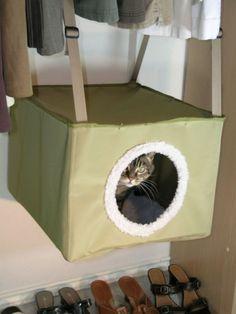 Kittywalk Closet Sleeper | Solutions