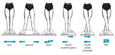 Art:There are five basic positions from which all movement in ballet begins. The…