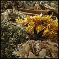 Herb Magic Catalogue: Magical Herbs and Natural Spells for Love, Luck, Money, Health, Protection, and Success