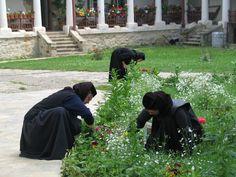 monastery (via turism-blog.ro) Turism Romania, City People, First Novel, Novels, Blog, Blogging, Fiction, Romance Novels