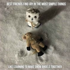 Travel with your best friend can lead to new experiences - like making snow angels together. Your Best Friend, Best Friends, How To Make Snow, Snow Angels, Teddy Bear, Adventure, Travel, Animals, Beat Friends