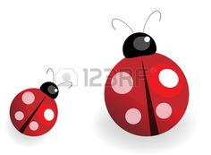 illustration of a lady bug over white background