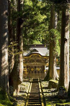 Venturing out of TOKYO to FUKUI : YOMIURI ONLINE(読売新聞) Buddhism Religion, Japan Landscape, Kanazawa, Nihon, Forests, Japanese Art, Tokyo, Landscapes, Mansions