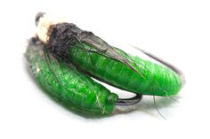 Green from martians is the color that works for rhyacophila caddis flies:   happy tying Lucian