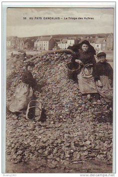 Cancale, triage des huitres c.1900  Brittany