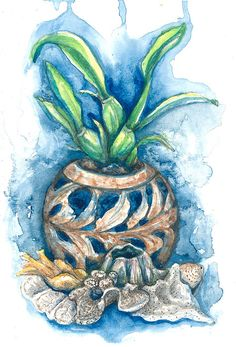 Orchid and Barnacle Plein Air Watercolor Still Life Painting by ashleygallery on Etsy