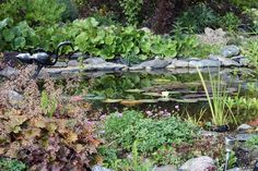 Rubens Rabatter: Trädgårdar