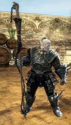 http://cooldown.fr/wp-content/uploads/2013/10/gw2-the-crossing-staff-2.jpg