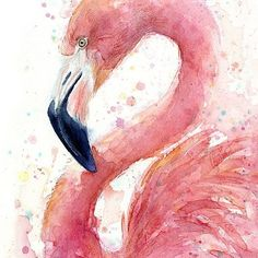 MUST STAY CREATIVE! Ordered new watercolors today! Can't wait to see what I can do. Love watercolor and this flamingo is just lovely. No credits for it  . . .  #earrings #photooftheday #drawing #fashion #accessories #design #pink #fashionista #beautiful #bohemian #fashionblogger #sketch #trendy #love #holiday #design #outfit #shopping #graphicdesign #etsy #art #summer #womenswear #weekend #blog #watercolor #watercolor