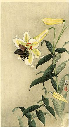 hanga gallery . . . torii gallery: Butterfly and Lily by Ohara Koson