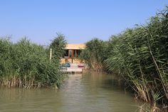 Cabin, House Styles, Stilt House, Human Settlement, Real Estates, Vacation, Cabins, Cottage