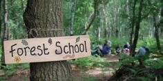 forest_school_compressed
