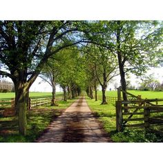 Private Road to Pitt House Farm:: OS grid SU5460 :: Geograph Britain and Ireland - photograph every grid square! found on Polyvore