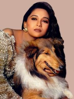 Image result for madhuri dixit dog