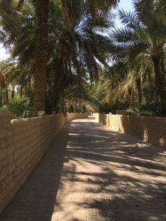 A picture heavy travel diary of our trip to Dubai. Hotel Bel Air, Animated Love Images, Desert Oasis, Dubai Travel, United Arab Emirates, Best Vacations, Abu Dhabi, Landscape Architecture, Cute Wallpapers