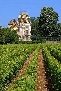 France, Cote d'Or, Aloxe Corton, vineyard and Chateau de Corton Andre Architecture France, Colonial Architecture, Palaces, French Castles, French Chateau, French Colonial, In Vino Veritas, French Countryside, France Travel