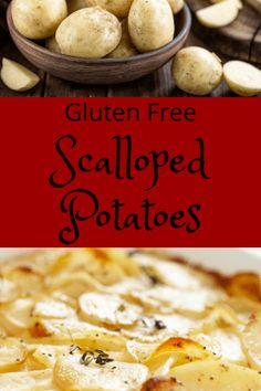 Easy Gluten Free Scalloped Potatoes - Pinch of Wellness Gluten Free Scalloped Potatoes, Scalloped Potato Casserole, Scalloped Potato Recipes, Gf Recipes, Gluten Free Recipes, Enchiladas Healthy, Baked Scallops, Favorite Recipes, Wellness
