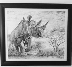 Rhino drawing by Dominique Wilkins Rhino Art, Dominique Wilkins, Wildlife Art, Figurative Art, Art Drawings, Moose Art, Portrait, Painting, Animals