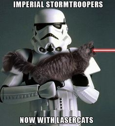 Imperial Stormtroopers...now with laser cats