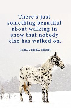40 Best Winter Quotes - Snow Quotes and Sayings You'll Love I Love Snow, I Love Winter, Winter Snow, Snow Quotes, Winter Quotes, Quotes About Snow, Winter Sayings, Best Friend Poems, Clearwater Beach