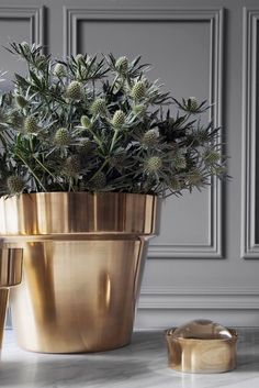 Swedish Brass Planter- Kaufmann Mercantile