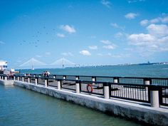 Charleston, SC | Things to Do | reviews, guides, things to do, film - Time Out New York